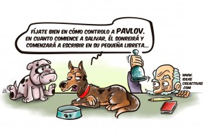 19e90-perro-pavlov-color