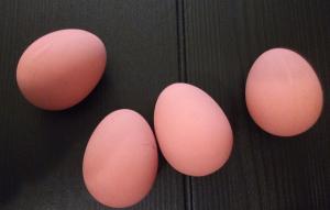 huevoss